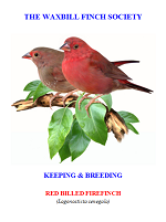 front cover featuring image of a red-billed firefinch.