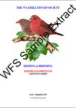 Sample cover of a red-billed firefinch